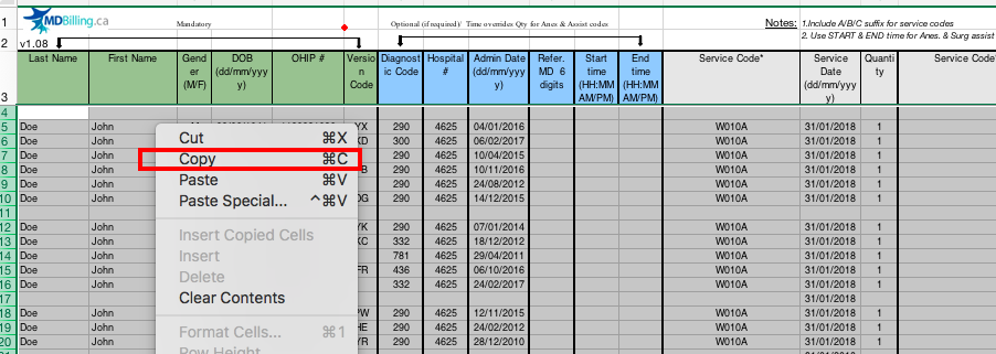 Excel copy menu